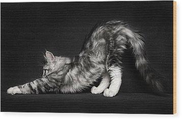 Stretching Wood Print by Robert Sijka