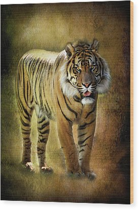 Sumatran Tiger  Wood Print by Saija  Lehtonen