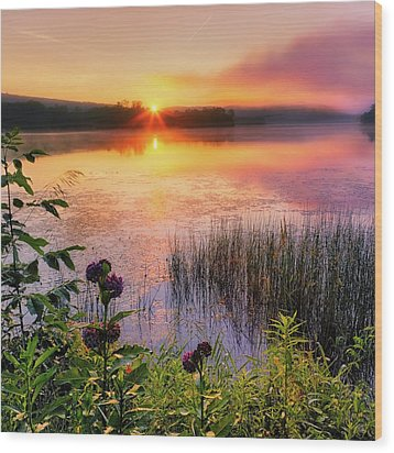 Wood Print featuring the photograph Summer Sunrise Square by Bill Wakeley