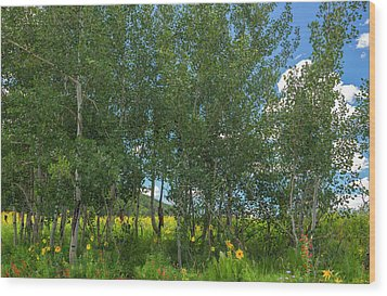 Wood Print featuring the photograph Summer Wildflowers by Tim Reaves
