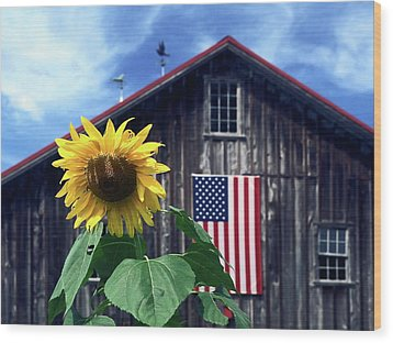 Sunflower By Barn Wood Print by Sally Weigand
