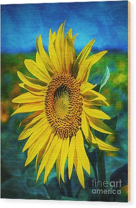 Wood Print featuring the digital art Sunflower by Ian Mitchell