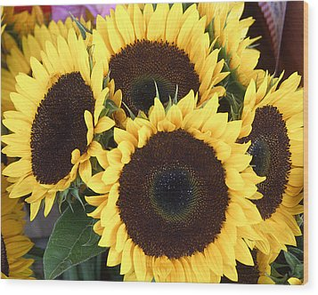 Sunflowers Wood Print by Tom Romeo