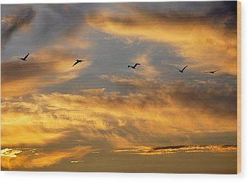 Sunset Flight Wood Print by AJ Schibig