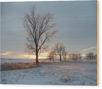 Sunset Over Icy Field Wood Print by David Junod