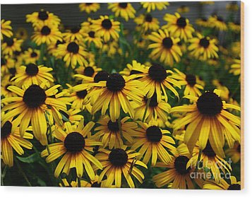 Sweet Flowers Wood Print by John S
