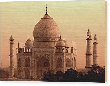 Taj Mahal Wood Print