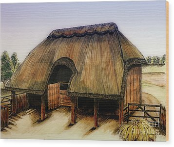 Thatched Barn Of Old Wood Print by Shari Nees