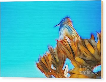 Wood Print featuring the photograph The Cactus Wren by Donna Greene