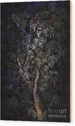 The Dark Side Wood Print