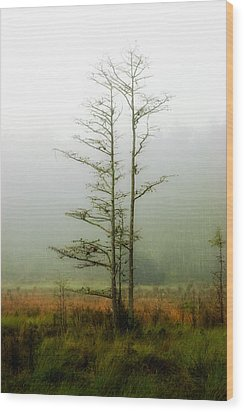 The Foggy Dew Wood Print by Rich Leighton