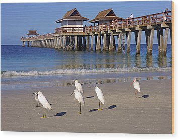 The Historic Naples Pier Wood Print by Robb Stan