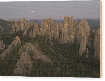 The Needles Protrude From Forests Wood Print by Phil Schermeister