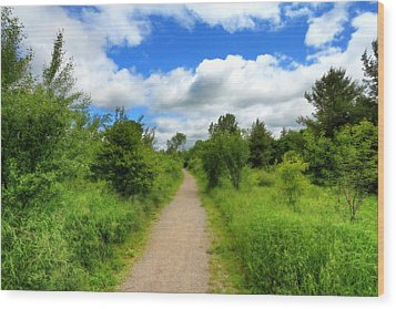 Wood Print featuring the photograph The Path Ahead by Anthony Rego