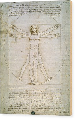 The Proportions Of The Human Figure Wood Print by Leonardo da Vinci