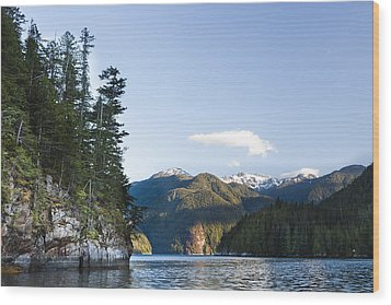The Rugged, Rocky Forested Shoreline Wood Print by Taylor S. Kennedy