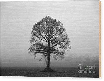 The Tree Wood Print by Amanda Barcon