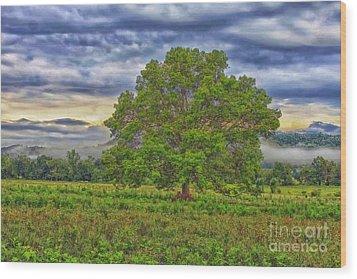 The Tree Wood Print by Geraldine DeBoer