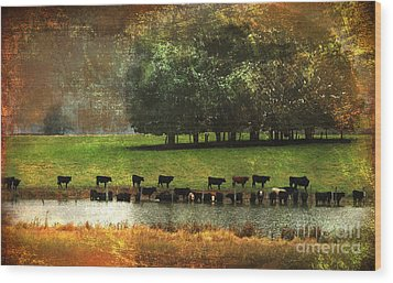 Till The Cows Come Home Wood Print by Olivia Hardwicke
