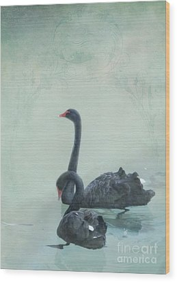 Black Swans Wood Print