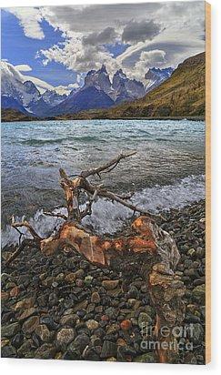 Torres Del Paine 17 Wood Print by Bernardo Galmarini