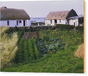 Traditional Cottages, Co Galway, Ireland Wood Print by The Irish Image Collection