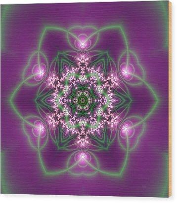 Transition Flower 6 Beats 3 Wood Print by Robert Thalmeier