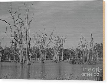 Wood Print featuring the photograph Tree Cemetery by Douglas Barnard