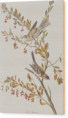 Tree Sparrow Wood Print by John James Audubon