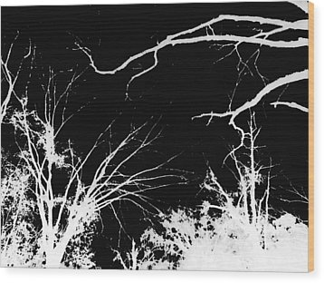 Tree Tops Wood Print