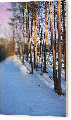 Trees Photography Wood Print by Mark Ashkenazi