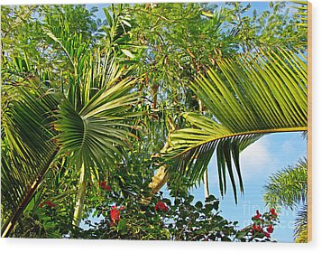 Tropical Plants Wood Print by Zalman Latzkovich
