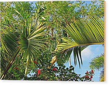 Tropical Plants Wood Print by Zalman Latzkovich
