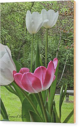 Wood Print featuring the photograph Tulips by Bonnie Willis