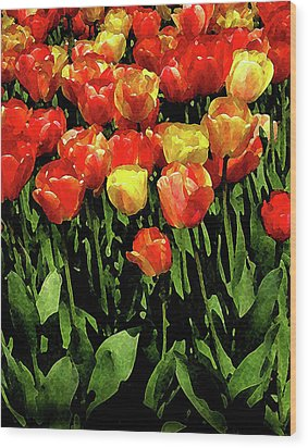 Tulips Wood Print by Timothy Bulone
