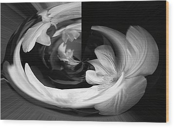 Wood Print featuring the photograph Twisted by Wanda Brandon