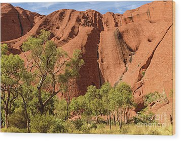Wood Print featuring the photograph Uluru 07 by Werner Padarin