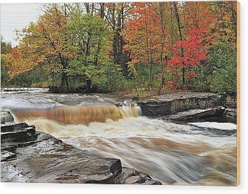 Unnamed Falls Wood Print by Michael Peychich