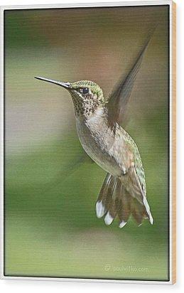 Untitled Hum_bird_five Wood Print