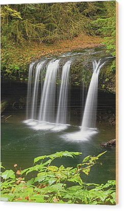 Upper Butte Creek Falls In Autumn Wood Print by David Gn