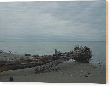 Wood Print featuring the photograph Vancouver Tower Beach  by Steven Richman