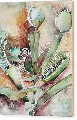 Venus Fly Trap Wood Print by Mindy Newman