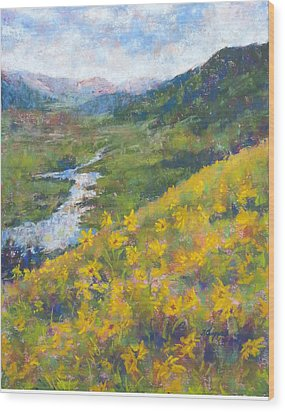 View From Baxters Gulch Wood Print by Becky Chappell