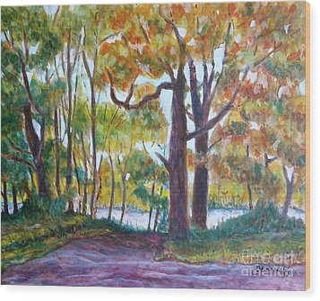View From My Driveway Wood Print by Jan Bennicoff
