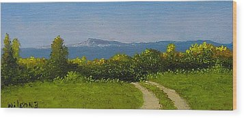 View From The Rim Wood Print by Fred Wilson