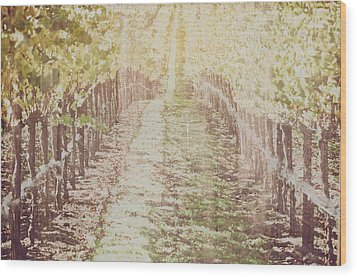 Vineyard In Autumn With Vintage Film Style Filter Wood Print