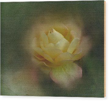 Wood Print featuring the photograph Vintage October Rose  by Richard Cummings