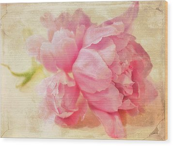 Vintage Pink Wood Print by Cathie Tyler