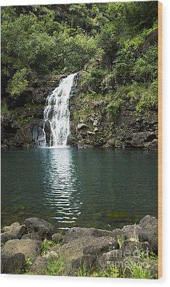 Waimea Falls Wood Print by Charmian Vistaunet