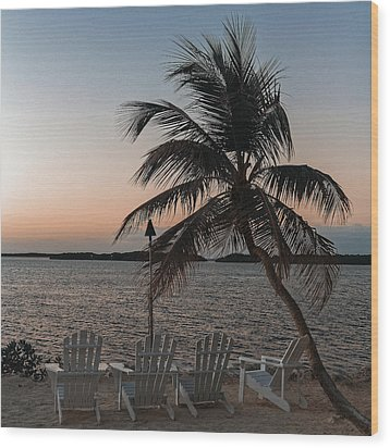 Wood Print featuring the photograph Waiting by Ron Dubin